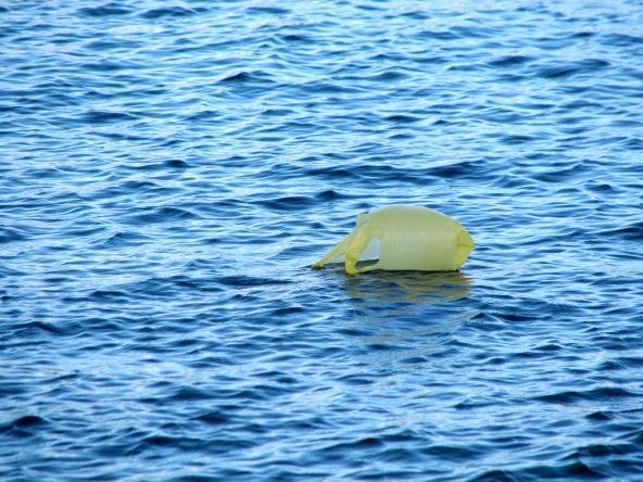 Eine Plastiktüte schwimmt hinaus aufs Meer - Im Nordpazifik treibt seit Jahrzehnten ein Müllstrudel, der mittlerweile so groß ist wie Zentraleuropa. Foto freeimages.com
