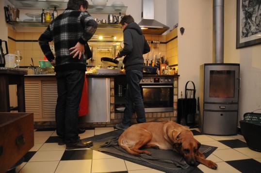 Bella hat es sich mitten in der Küche gemütlich gemacht.